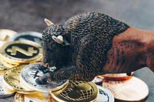 Ảnh của 2 altcoin sẵn sàng breakout và Bitcoin có khả năng bùng nổ 400% vào cuối năm, theo trader Capo