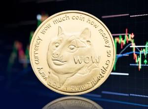 """Picture of Dogecoin là một """"trò lừa đảo"""" sẽ kết thúc """"rất tệ"""", chuyên gia tài chính Ric Edelman cho biết"""