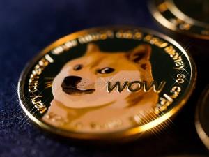 Ảnh của Lượt tìm kiếm Dogecoin đã bùng nổ 122x trong suốt cuộc biểu tình 10,000% của DOGE