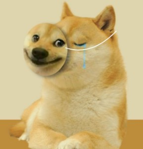 Ảnh của DOGE: $0,5 còn khó lấy lại chứ chưa nói đến $1