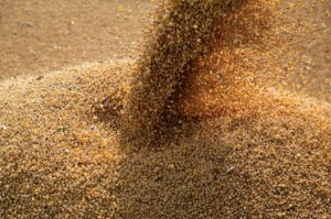 Picture of U.S. soy exports hit 6-month high as Gulf loadings rise after Ida; lag year ago pace