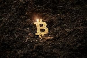Ảnh của Pullback của Bitcoin sẽ kéo dài bao lâu và kịch bản cuối năm nay là gì?